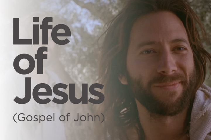 Life of Jesus (Gospel of John)